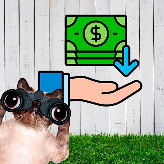 Бонусы за каждую покупку Клуба Соседи